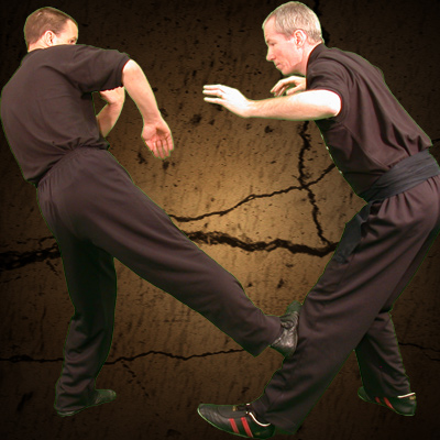 Ashley Phillips Sifu: Wing Chun Kung Fu Low Side Kick